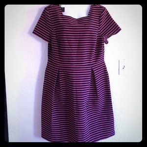 Talbots dress striped pink black pleated 16 new